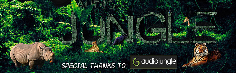 Audio Jungle 6